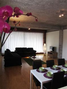 Apartments and Villas in City Centre, Brussels, Belgium. Apartment Living, Living Rooms, Loft, Brussels Belgium, Ceiling Lights, Curtains, Nice, Villas, Orchid