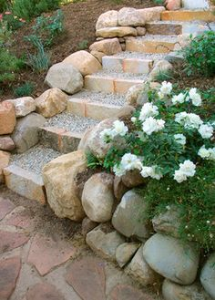 Garden Steps - like the rock edges