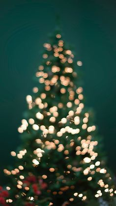 iPhone wallpaper 40 stunning iPhone XS and XS Max Christmas Wallpapers … - Weihnachten