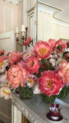 Flowers Nature, My Flower, Beautiful Flowers, Image Pastel, No Rain, Flower Aesthetic, Beige Aesthetic, Mother Nature, Peonies