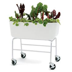 Mobile planter made from recycled plastic milk jugs.