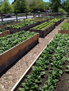 40 Inspiring Vegetable Garden Design for Your Backyard - Garten