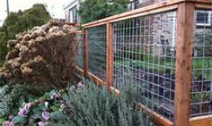 Yard Fence Ideas - Bing Images
