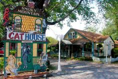 Smoky Mountain Cat House, Pigeon Forge, TN