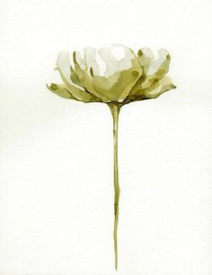 FLOWERS  Tulip / Papoila  Drawings with Ink by SimpleArtStudio