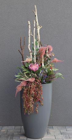Orchids, Planter Pots, Garden, Garten, Lawn And Garden, Gardens, Gardening, Outdoor, Yard