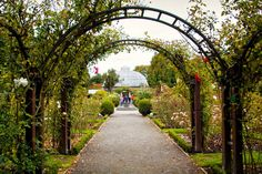 Christchurch Botanic Gardens Visitor Centre, Christchurch, New Zealand — by JulieK. I was in Christchurch in early 2012, about a year after the devastating earthquake. Much of the CBD was cordoned off,...