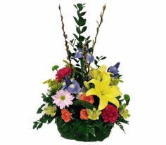 Order Happy Springtime Premium Moss Basket from Rockcastle Florist, your local Rochester florist. For fresh and fast flower delivery throughout Rochester, NY area. Easter Plants, Mosses Basket, Fast Flowers, Flower Delivery, Spring Time, Happy, Ser Feliz, Being Happy