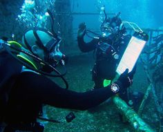 Mighty O to Great Carrier Reef: Chronology of a Sunken Aircraft Carrier