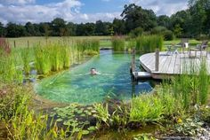 Simple Swimming Pond Ideas for Alternative Swimming Pool for Fun Summer Inspiration Pictures) - Oriel D. Simple Swimming Pond Ideas for Alternative Swimming Pool for Fun Summer Inspiration Pictures) Swimming Pool Pond, Natural Swimming Ponds, Swimming Pool Landscaping, Natural Pond, Pond Landscaping, Pool Decks, Natural Backyard Pools, Pool Fun, Natural Landscaping