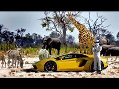 Top Gear season 22 trailer released | Car Fanatics Blog