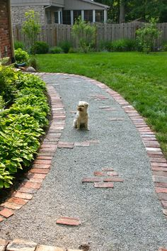 beautiful paver walk way design - Google Search