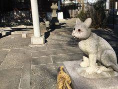 猫返し神社の狛猫さん