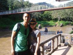 Maetang Elephant Park, Chiang Mai Elephant Camp, Suitcases, Chiang Mai, Thailand, Camping, Tours, Park, Campsite, Suitcase