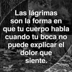 #lagrimas#dolor#elial#