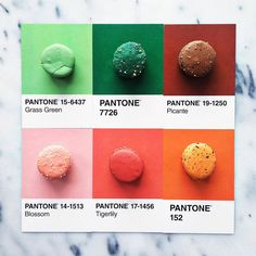 Pantone macarons. Food styling on Artluxe Designs. #artluxedesigns
