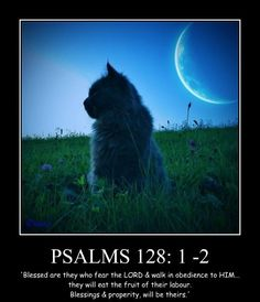 Psalm 128:1-2 Blessed are they who fear the Lord...