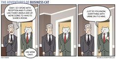Business Cat - Mix-Up