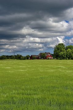 Clouds over the red wooden house, Saaremaa, Estonia Photos For Sale, My Photos, Rural House, Beverly Hills, Countryside, Fine Art Prints, Design Inspiration, Houses, Clouds