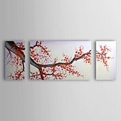 Hand Painted Oil Painting Floral Cherry Bloss... – USD $ 99.99