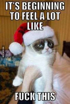 They already started playing Christmas music at work...
