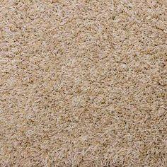 MEDLEY, Amber Waves, Shag/Frieze PetProtect® Carpet - STAINMASTER®