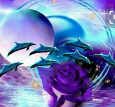 Animal Pictures, Cool Pictures, Dolphin Painting, Dolphins Tattoo, Baby Dolphins, Bottlenose Dolphin, Blue Paint Colors, Purple Roses, Marine Life