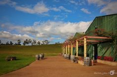 Wine tasting in Hunter Valley - Australia. Click picture to see the full image. Check out my page for more photography projects.