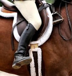 Drop your irons...this is the best for indoor winter lessons! Teaches so much! Next, drop your reigns and head to the jumps! Close your eyes and learn to feel and listen to your horse!