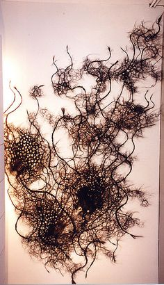 Kilkenny Horse hair Sculpture by Petah Coyne in the Butler Gallery by πρώρα (Prora), via Flickr