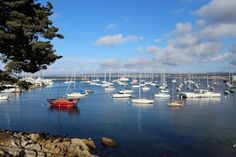 A Day in Monterey Bay | Travel and Adventure Ideas in Monterey Bay