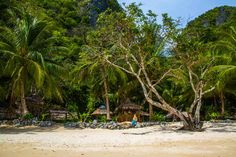 First hand account of the two BEST El Nido Tours and why! Real advice from real travellers. Palawan, Street View, Tours, Island, Travel, Block Island, Viajes, Islands, Destinations