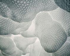 Styrofoam Cups by Tara Donovan on Curiator, the world's biggest collaborative art collection. Tara Donovan, Art Génératif, Cup Art, Science Art, American Artists, Installation Art, Art Installations, Textures Patterns, Design Patterns