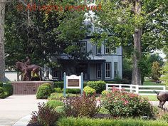 Kentucky Horse Park Kentucky Horse Park, Harness Racing, Horse Farms, Horses, America, Plants, Statues, Monuments, Celebs