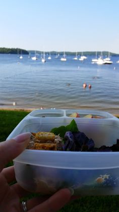 Lunches Fit For a Kid: Beach Picnic in Easylunchboxes