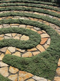 Image result for rose flagstone in a nautilus pattern images