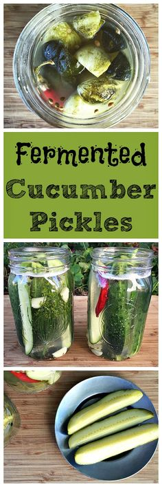 Cucumber Pickles A simple to make fermented vegetable, these cucumber pickles are also super tasty!A simple to make fermented vegetable, these cucumber pickles are also super tasty! Fermentation Recipes, Canning Recipes, Probiotic Foods, Fermented Foods, Lacto Fermented Pickles, Yummy Appetizers, Yummy Snacks, Kefir, Real Food Recipes