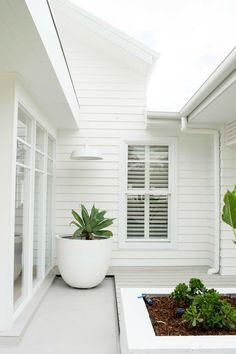 It was always going to be weatherboard — three birds renovations White Exterior Houses, Exterior House Colors, Exterior Design, Architecture Renovation, Architecture Design, Sustainable Architecture, Residential Architecture, White Beach Houses, White Houses