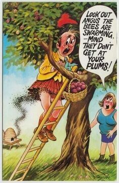Saucy Seaside Postcard - Scottish Man In Kilt Angus Plums Bees Bamforth No. Sending Postcards, Funny Postcards, Picture Postcards, Holiday Postcards, Vintage Postcards, Funny Cartoon Pictures, Cartoon Jokes, Old Cartoons, Adult Dirty Jokes