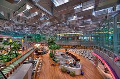 Changi International Airport – Singapore. Such a beautiful airport with 3 great terminals