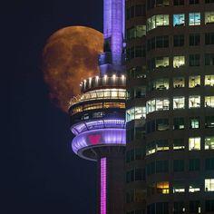 Solar System, Cn Tower, Toronto, Canada, History, Building, Travel, Tips, Sistema Solar