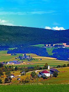 Some boring autumn scenery. Ulrichsberg, Austria / Österreich