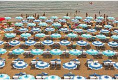 Judith Gigliotti, Blue Umbrellas