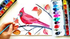 How to Paint Watercolor Bird - Relaxing Autumn Painting Tutorial \ ASMR Art Red cardinal bird painting. How to paint easy bird and a. Autumn Illustration, Watercolor Illustration, Watercolor Bird, Watercolor Paintings, Easy Bird, Cardinal Birds, Autumn Painting, Asmr, Autumn Leaves