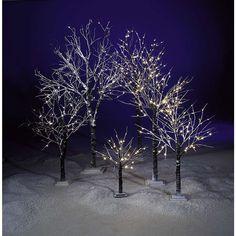 Kennen Sie schon unsere neuen Winter-Lichterbäume? Diese sorgen für eine sanfte stimmungsvolle Innenbeleuchtung und ist genau richtig in der dunklen Jahreszeit. 💡✨ #DekoWoerner #deko #dekoration #winteriscoming #winterdeko #led #winter
