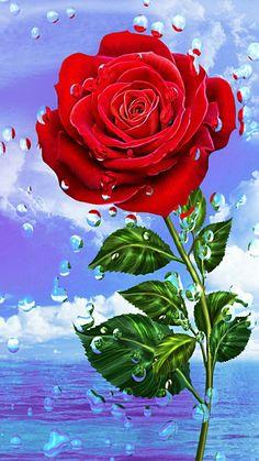 rose wallpaper by georgekev - 04 - Free on ZEDGE™ Rose Flower Wallpaper, Flowery Wallpaper, Butterfly Wallpaper, Cute Wallpaper Backgrounds, Flower Backgrounds, Colorful Wallpaper, Screen Wallpaper, Beautiful Rose Flowers, Beautiful Flowers Wallpapers