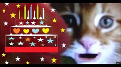 Send Free Card Happy Birthday Wishes Message by HappywishesKitty