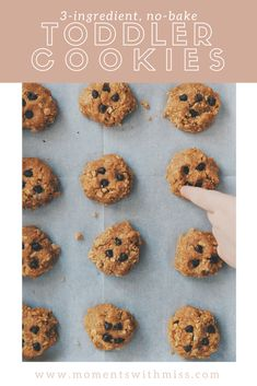 No-Bake, Toddler Cookies — Moments with Miss Cooking with Kids Baking With Toddlers, Cooking With Kids Easy, Kids Cooking Recipes, Easy Meals For Kids, Baby Food Recipes, Kids Meals, Baking Recipes, Dessert Recipes, Easy Recipes