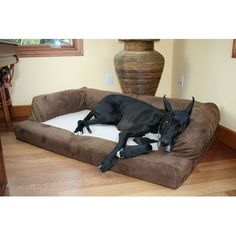 You'll love the Baxter Couch Bolster Dog Bed at Wayfair - Great Deals on all Pets  products with Free Shipping on most stuff, even the big stuff.
