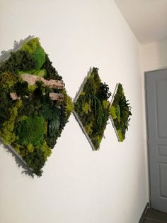 Tableau Triptyque Cadre Mur Végétaux Stabilisés Plant Wall, Triptych, Herbs, Crafty, Amazon Fr, Handmade Gifts, Plants, Etsy, Vintage